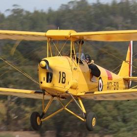 tiger-moth-barossa-airshow-rowland-flat-2017-04